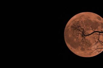 Луч Миссии Луна: Справиться со Страхами